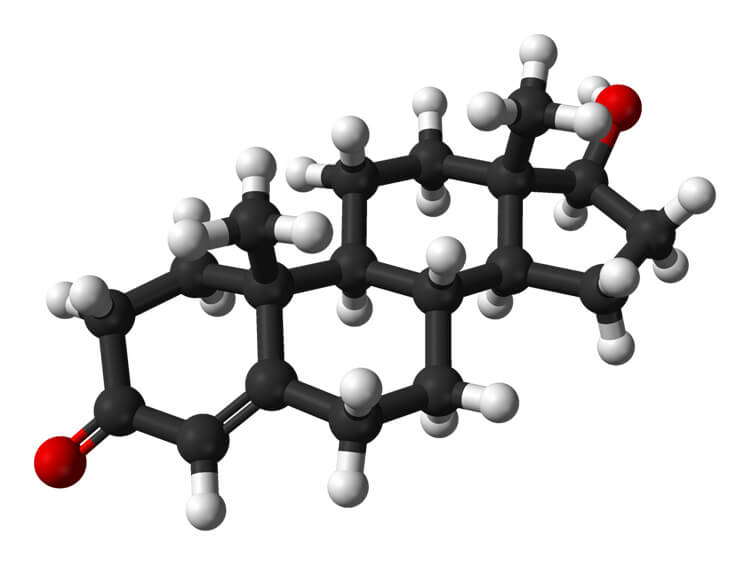 What does testosterone do for you
