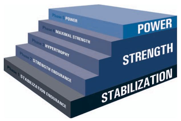 NASM OPT Model Image Credit NASM Study Guide-min